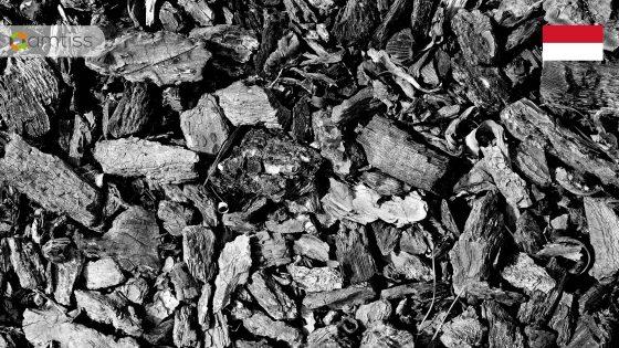 harga acuan batubara januari 2020